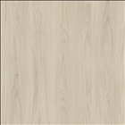 White Cape Elm